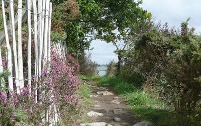 le long de la rivière de Pont l'Abbé